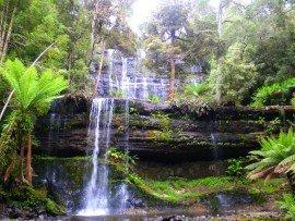 wasserfall auf tasmanien