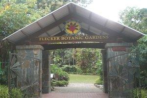 Der Flecker Botanic Gardens ist eine grüne Oase in Zentrumnähe von Cairns.