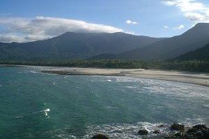 Der weiße Sandstrand angrenzend an den immergrünen Regenwald am Cape Tribulation