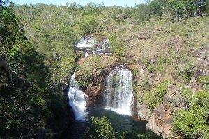 Die Florence Falls im Litchfield Nationalpark dienen vielen Touristen für eine Abkühlung