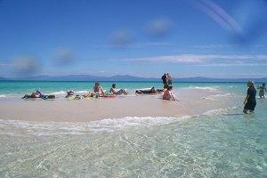 Ein Ausflug zum Great Barrier Reef gehört zum Pflichtprogramm bei einem Besuch von Cairns.