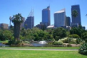 Blick vom Royal Botanics Garden auf die beeindruckende Skyline von Sydney.